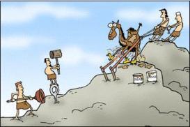 Camelo agulha